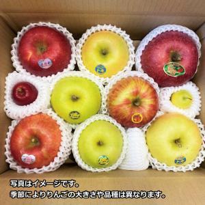 青森りんご食べ比べセット(3kg箱に入るだけ)※品種指定不可 abc-afactory