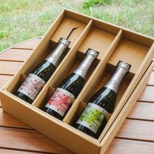 内祝い お酒 プレゼント ギフト アオモリシードル 375ml 3本セット  化粧箱付|abc-afactory