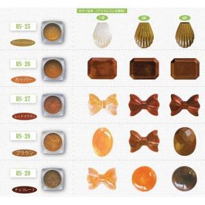 レジン染色用顔料 カラーリングパウダー パールタイプ RS-25-31 レジン/レジンクラフト/アクセサリー 樹脂/パーツ/材料/手芸用品/abcクラフト