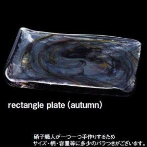 TAKAZAWA×津軽びいどろ SHIKI rectangle plate rectangle plate(autumn)≪2セット≫品番:F-71127 【皿・ボウル】 <皿/プレート/レクタングル/|abc-wine