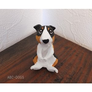犬玉(カワセミ工房) シェルティ トライカラー|abcdogs