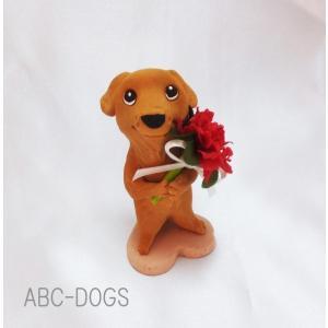 カーネーション(カワセミ工房) ゴールデンレトリバー|abcdogs