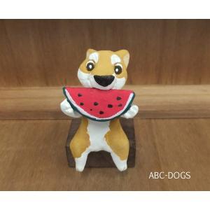スイカ(カワセミ工房) 赤柴|abcdogs