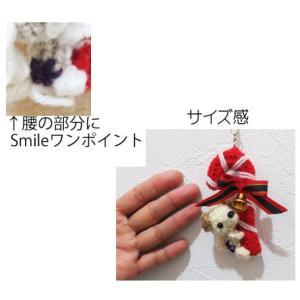 キャンディケイン(Smile) シーズー abcdogs 04
