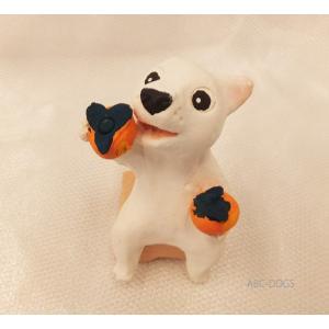柿(カワセミ工房) 白柴 abcdogs