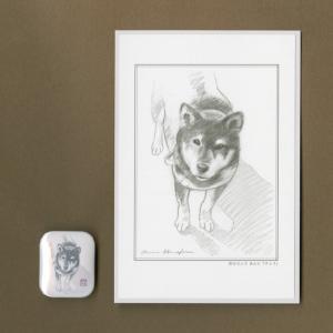バッジ&ポストカード(はなふさ あんに) NO,27|abcdogs