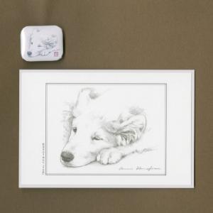 バッジ&ポストカード(はなふさ あんに) NO,77|abcdogs