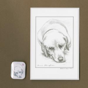 バッジ&ポストカード(はなふさ あんに) NO,85|abcdogs