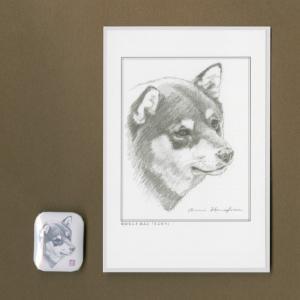 バッジ&ポストカード(はなふさ あんに) NO,95|abcdogs