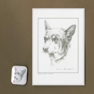 バッジ&ポストカード(はなふさ あんに) NO,112|abcdogs