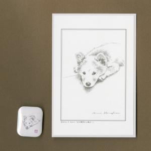 バッジ&ポストカード(はなふさ あんに) NO,132|abcdogs