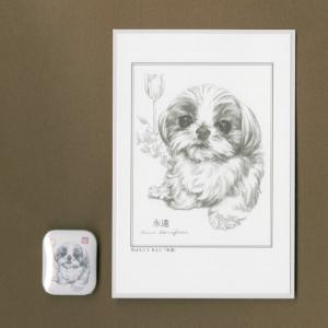 バッジ&ポストカード(はなふさ あんに) NO,151|abcdogs