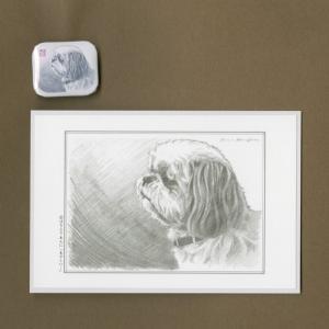 バッジ&ポストカード(はなふさ あんに) NO,159|abcdogs