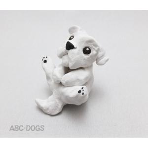 犬玉(カワセミ工房) マルチーズ|abcdogs