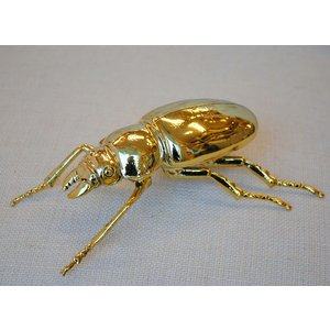 北欧雑貨 インテリア おしゃれ 真鍮 昆虫 メタル カブトム...