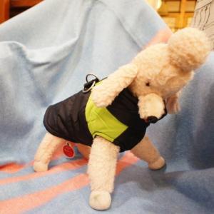 DOG WEAR  ハーネスダウン|abracadabra