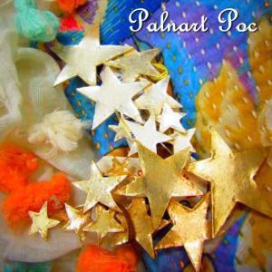 Palnart Poc パルナートポック メテオブローチ 全2色|abracadabra