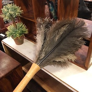 Feather Duster 60cm|abracadabra