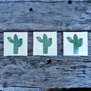 メキシコタイル サボテン|abracadabra