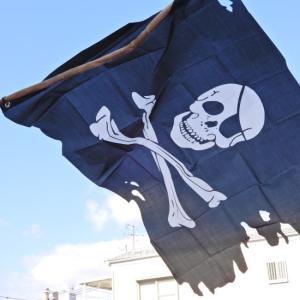 TOPANGA INTERIOR Skull&Cross Bone Flag TypeE|abracadabra