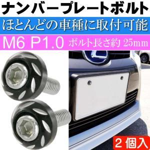 ナンバープレートボルト ネジ カラーワッシャー 黒2個 ビス M6 P1.0 フロント部の雰囲気が変わる as1755|absolute