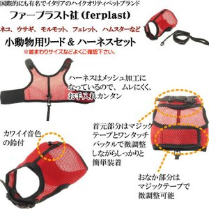 スモールアニマル用リード&ハーネスセット ジョギングXL赤 丈夫なペット用品リード お散歩ペット用品リード 使いやすいリード Fa242 absolute 02