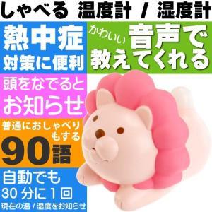温度計 湿度計 ライオンのおしゃべり温湿度計 ピンク EX-2985 光とおしゃべりで現在の環境を伝えてくれる Ha136|absolute