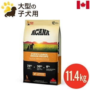 【正規品】アカナ パピーラージブリード 11.4kg 大型犬 小犬用 大粒 ドッグフード 賞味期限2...