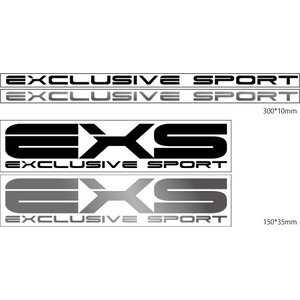 EXS EXCLUSIVE SPORTS ステッカー 300mm*10mm クリックポスト送料無料|access-ev