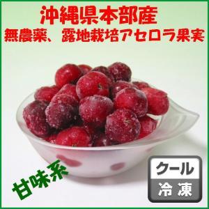沖縄県本部町産甘味系アセロラ冷凍果実