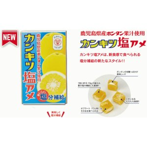ランドアート カンキツ塩アメ 鹿児島県産ボンタン果汁使用 1...