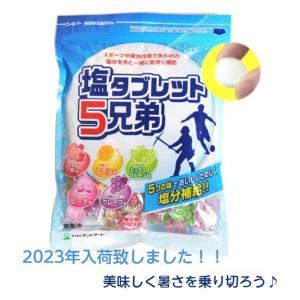 【2018年最新入荷】 ランドアート 塩タブレット5兄弟 5...