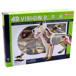 犬 解剖 人形 模型 おもちゃ キット 透明 クリア フィギュア 動物 サイエンストイ 知育玩具 理科 生物 自由研究 学習 英語 海外 教材|acomes