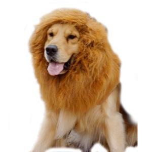 大型 犬 用 ライオン たてがみ ウィッグ コスプレ パーティー イベント ゴールデンレトリバー ラブラドール・レトリーバー 年賀状 戌年 acomes