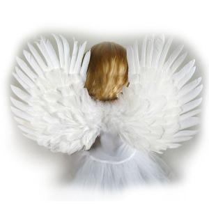 天使 羽 子供用 ウィング コスプレ 小物 イベント ハロウィン|acomes