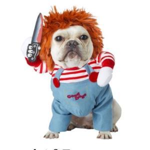 チャッキー人形 のドッグコスチュームです。ウィッグと腕やフォーム製のナイフ付きの衣装のセットです。 ...
