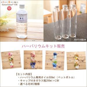 【Aタイプ】ハーバリウムお試しキット(オイル1本、ガラス瓶2本、花材セット2種類)