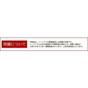 【お試しキット】ハーバリウム花材セット1本分(...の詳細画像4