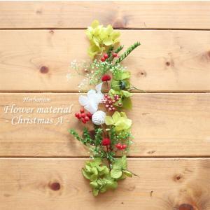 ★期間限定★【お試しキット】ハーバリウム花材セット1本分(クリスマスA)