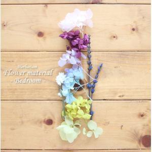 【お試しキット】ハーバリウム花材セット1本分(B...の商品画像