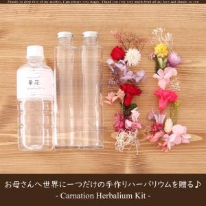 【GW中のご注文で母の日までにお届け】2019 母の日 ハーバリウム 手作りキット【2本分】(オイル500ml、ガラス瓶2本、選べる花材2種類)