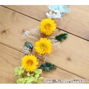 【お試しキット】ハーバリウム花材セット1本分(...の詳細画像1