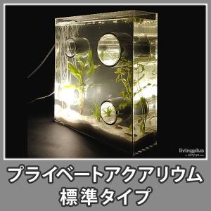 水槽 おしゃれ アクアリウム 照明付 インテリア アクリル デザイナー『プライベートアクアリウム(標準)』|acry-ya
