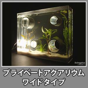 水槽 おしゃれ アクアリウム 照明付 インテリア アクリル デザイナー『プライベートアクアリウム(ワイド)』|acry-ya