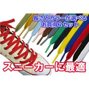 靴ひも 靴紐 スニーカー コンバース ナイキ 石目平(シューレース)長さと色が選べる2足セット 1000円ポッキリ ポイント消化 【10】|actika