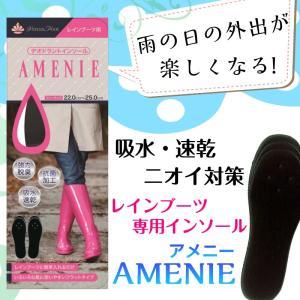 レインブーツ用 デオドラントインソールAMENIE  2足セット【ネコポス配送商品】|actika