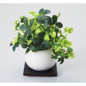 内祝い お返し ギフト 造花 pet1ts po1s PAR1S 光触媒グリーン 4577 送料無料|adachinet-giftshop