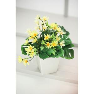 内祝い お返し ギフト 造花 pet1ts po1s PAR1S 光触媒 マーガレット 5522 送料無料|adachinet-giftshop