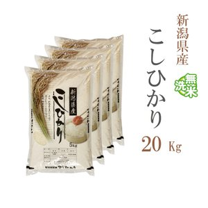 無洗米 20kg 送料無料 新米 コシヒカリ 5kg×4袋 新潟県産 令和元年産 1等米 米 20キロ お米 食品 北海道・沖縄は追加送料|adachinet-umai
