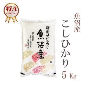 米 5kg こしひかり 新潟県魚沼産 29年産 1等米 白米...